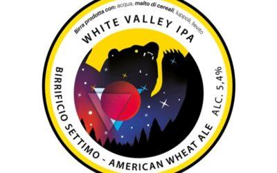Artigianale ed esclusiva: è la birra per l'Albizzate Valley Festival