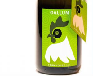 """""""Gallum"""" in edizione numerata: la novità del Birrificio Settimo"""